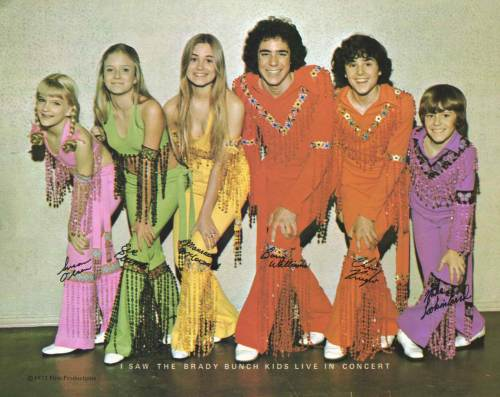 Brady-Bunch-concert-photo toothpickmag